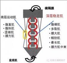 S-E-TManBetX客户端iOS技术在慢性下腰痛中的应用